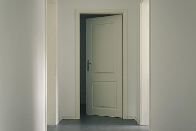 puertas de paso blanca estrecha
