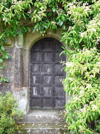 comprar puertas viejas de madera