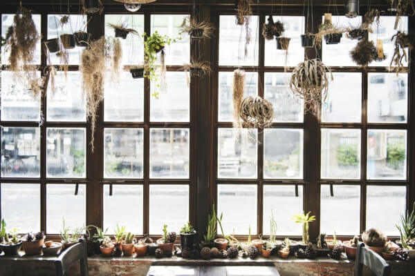 ventanas de madera galerias