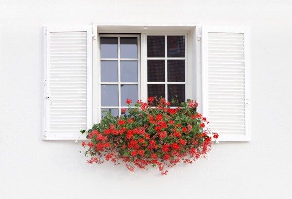 ventanas de madera blancas