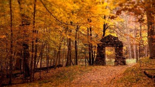 puertas otoño